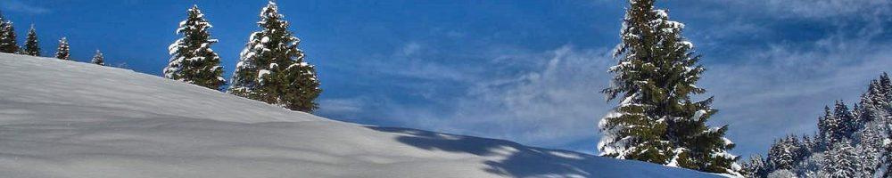 LE DOMAINE DE LA GIETTAZ : LES PORTES DU MONT BLANC  -  PANORAMA 360°  AU SOMMET DES PISTES